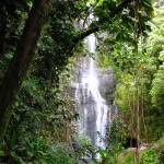 """""""Maui Waterfall"""" by MattParry"""