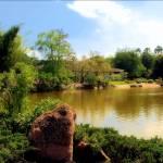 """Garden Rocks"" by doncon402"