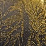 """""""frosted window at sunset"""" by poetryoflight"""