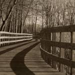 """""""Lake Erie Boardwalk"""" by cfoxtrot"""