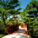 """""""Garden Walk"""" by doncon402"""