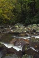Appalachian Mountain Creek