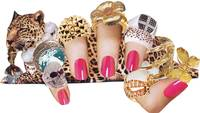 Candy Leopard