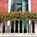 """Burano Geraniums"" by DonnaCorless"