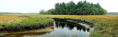 panoramic wetlands