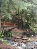 Bridge at Marymere Falls State Parks
