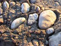 Rocks at the Riverbottom