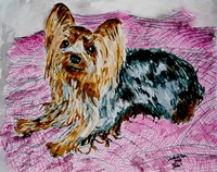 YORKIE yorkshire terrier dog art painting