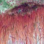 """Cranberry Reeds"" by RobertBurns"