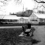 """""""allan gardens"""" by BrookeFowler"""