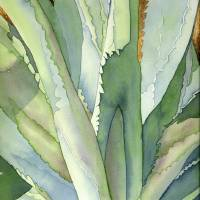 """Agave1"" by art4fish"