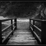 """Prospect Bridge"" by Askbrad888"