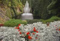 Fountain at Butchart Garden