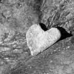 """Heart Rock"" by janelldavidson"