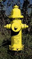 Yellow Fire Hydrant CR Poster IMG_0066