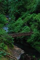 Silver Falls Foot Bridge