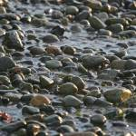 """""""Rocks by the Sea"""" by johnpetraborg"""