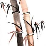 """Rain Bamboo"" by CaseyShannonStudio"