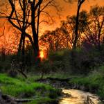 """""""Special Sunset"""" by thephotographymuse"""