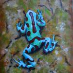 """""""Green and Black Poison DartFrog"""" by laughingface2"""