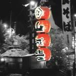 """Paper Lanterns"" by nibbana"
