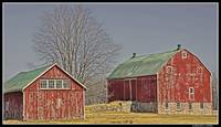 Barns, Niagara on the Lake