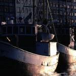 """""""Stockholm, Sweden, Boats"""" by javaman"""