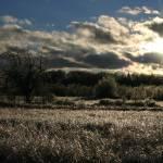 """""""Ice Field"""" by meanmrmustard"""