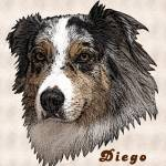 """Diego Portrait"" by diane"