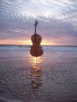 Cello World Without End