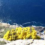"""Cliffs at Cap de Formentor"" by JustOneWoman"