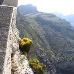 """Mallorca Cliffs3"" by JustOneWoman"