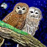 """owls by Harry"" by harryljjr"