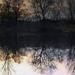"""""""Pond at thirty minutes before sunset in December"""" by fjsjr"""