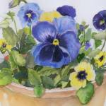 """Pansies"" by lindahaile"