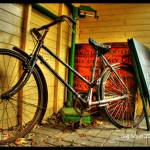 """Neglected Bicycle"" by frenchy"