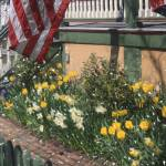 """Flag over the front porch Cape may, NJ."" by Artkeptsimple"