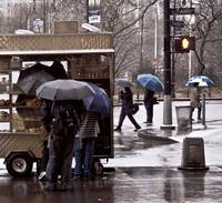 Coffee Cart Umbrellas