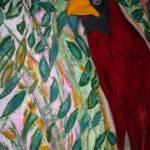 """cardinal 029"" by ashleighjacobus"