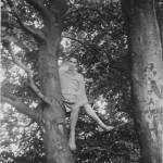 """Self up the big beech tree, Bishop"