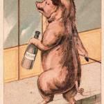 """Absinthe Pig 1200dpi"" by oxygenee"