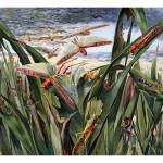 """Plague of the Desert Locust"" by markkumurto"
