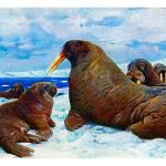 """The walrus (Odobenus rosmarus)"" by markkumurto"