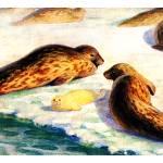 """The ringed seal (Pusa hispida)"" by markkumurto"
