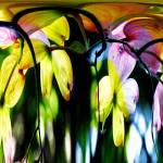 """Surrealistic Dogwood Water falls"" by DBGCreations"
