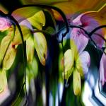 """""""Surrealistic Blossoms"""" by DBGCreations"""