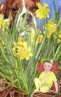 The Daffodil Fairy