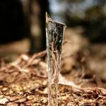 """Melting icicle #2"" by photoclave"