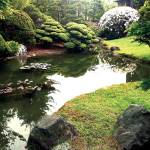 """Japanese Tea Garden"" by Serious"