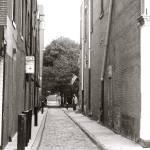 """Single Alley, Single Man"" by samdgadii"